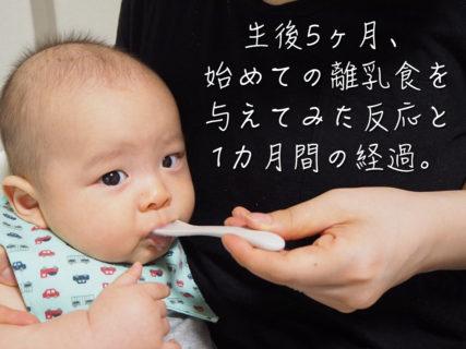 生後5ヶ月、始めての離乳食を与えてみた反応と1カ月間の経過。