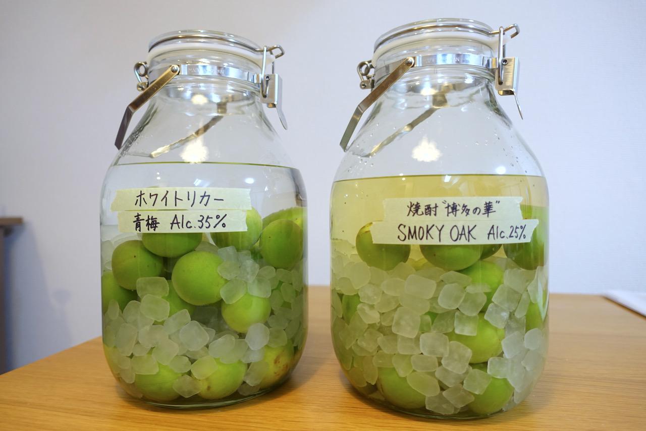 【梅酒の作り方】自家製梅酒を作ってみました。ベースが異なる2種で漬けてみる。